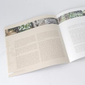 Brochures carré large : 170g mat