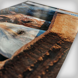 Durable 2-Sided Foamex Posters