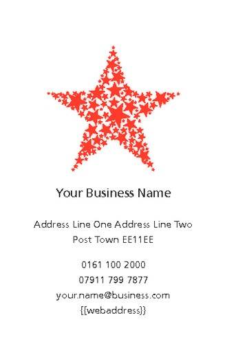 Event Organisers Business Card  by Mr Aaron Staple