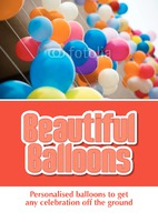 Balloon Modellers A4 Leaflets by
